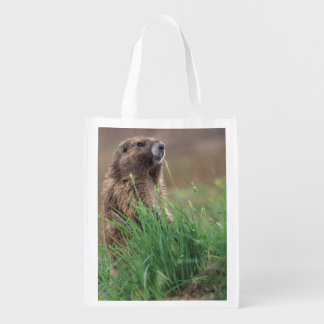 NA, USA, Washington, Olympic NP, Olympic 2 Reusable Grocery Bag