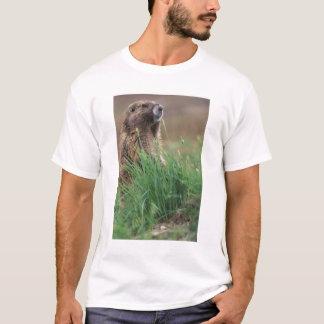 NA, USA, Washington, Olympic NP, Olympic 2 T-Shirt