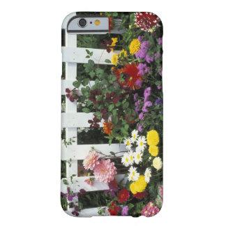NA, USA, Washington, Sammamish, White picket Barely There iPhone 6 Case