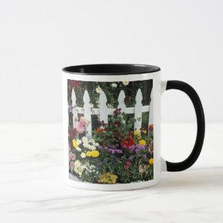 NA, USA, Washington, Sammamish, White picket Mug