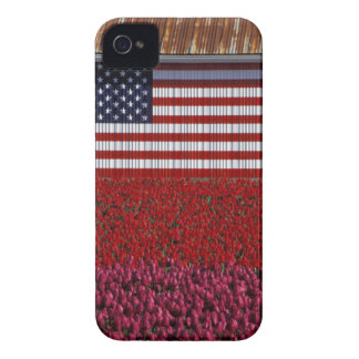 NA, USA, Washington, Skagit Valley, U.S. flag on iPhone 4 Covers