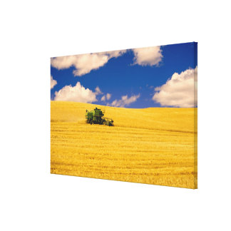 NA, USA, Washington State, Palouse Region, Canvas Print