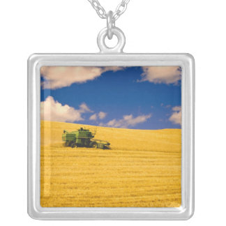 NA, USA, Washington State, Palouse Region, Silver Plated Necklace