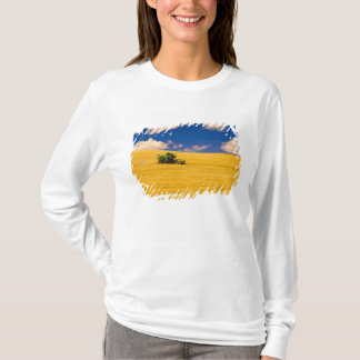 NA, USA, Washington State, Palouse Region, T-Shirt