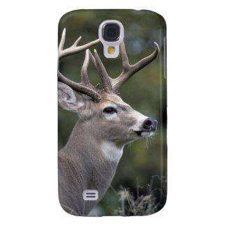 NA, USA, Washington State, White-tailed deer, Galaxy S4 Case