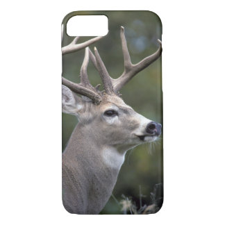 NA, USA, Washington State, White-tailed deer, iPhone 8/7 Case