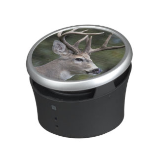 NA, USA, Washington State, White-tailed deer, Speaker