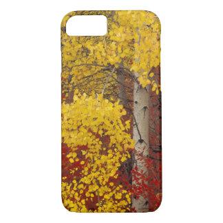 NA, USA, Washington, Wenatchee National Forest. iPhone 8/7 Case