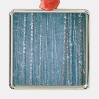 NA, USA, WY. Snowy winter scene among Christmas Ornaments
