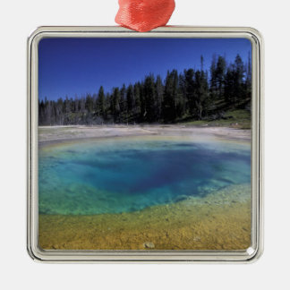 NA, USA, Wyoming, Yellowstone National Park. 2 Silver-Colored Square Decoration