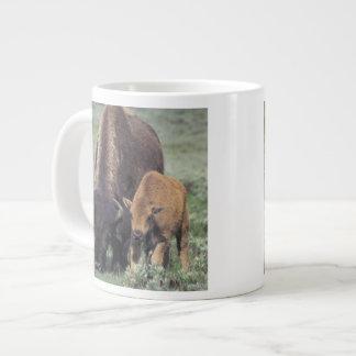 NA, USA, Wyoming, Yellowstone National Park. Giant Coffee Mug