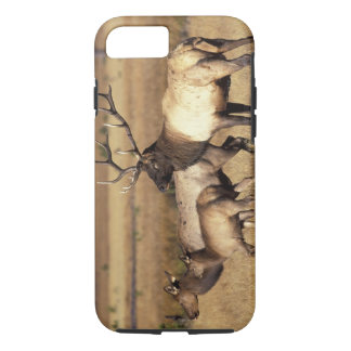 NA, USA, Wyoming, Yellowstone National Park. iPhone 7 Case