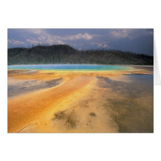NA, USA, Wyoming, Yellowstone NP, Grand Greeting Card