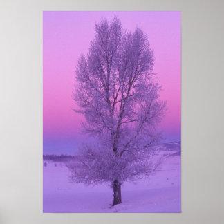 NA, USA, Wyoming, Yellowstone NP, Landscape Poster