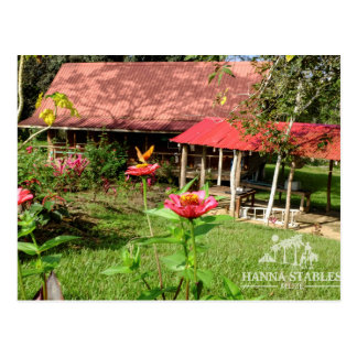 Nabitunich Stone Cottages Belise Post Card