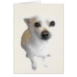Nacho, the white Chihuahua card