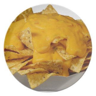 Nachos Plate
