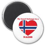Naess Refrigerator Magnet