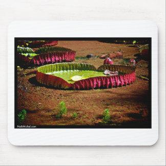 Naik Michel Photography Hawaii 007 Mouse Pad