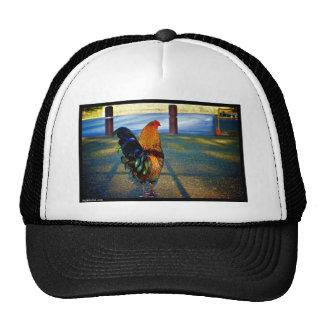 Naik Michel Photography Hawaii 015 Hats