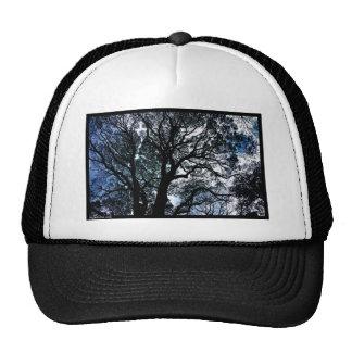 Naik Michel Photography Hawaii 061 Hats