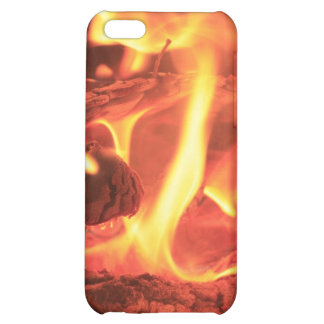 Nail In The Fire Case For iPhone 5C