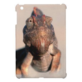 Namaqua Chameleon (Chamaeleo Namaquensis) iPad Mini Cover