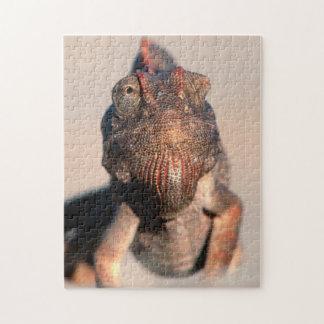 Namaqua Chameleon (Chamaeleo Namaquensis) Jigsaw Puzzle