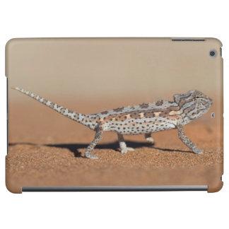 Namaqua Chameleon, Namib Desert, Namib-Naukluft