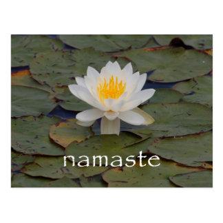 Namaste Lotus Blossom Postcard