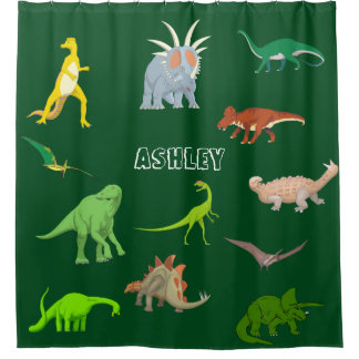Name Colourful Dinosaurs Kid's Shower Curtain