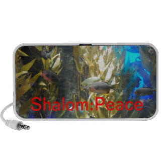 Names of GOD w/Meanings - Shalom:Peace PC Speakers