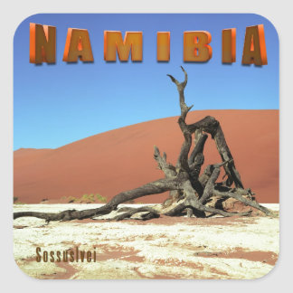 Namib Desert Sossuslvei Namibia Square Sticker
