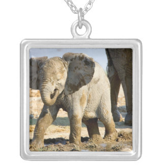 Namibia, Africa: Baby African Elephant Silver Plated Necklace