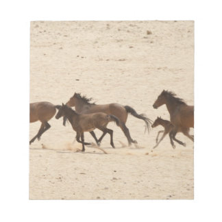 Namibia, Aus. Group of running wild horses on Notepad