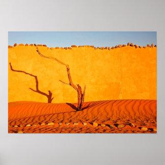 Namibia Desert Still Life Print