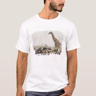 Namibia, Etosha National Park. A lone giraffe T-Shirt