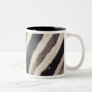 Namibia, Etosha National Park. Details of two Coffee Mug