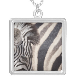 Namibia, Etosha National Park. Details of two Silver Plated Necklace