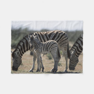 Namibia, Etosha National Park, Plain Zebra 1 Fleece Blanket