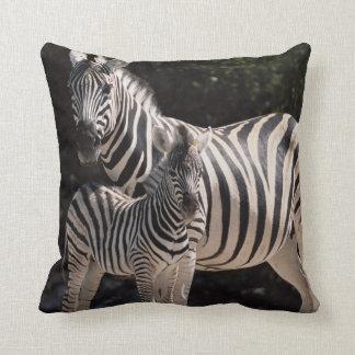Namibia, Etosha National Park, Plains Zebra 2 Cushion