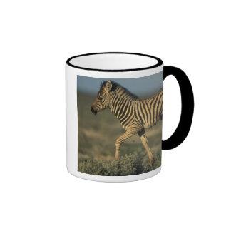 Namibia, Etosha National Park, Young Plains Mug