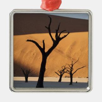 Namibia, Namib Desert, Sossusvlei, Christmas Ornament
