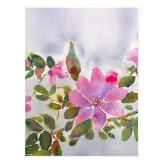 Nana's Roses Postcard