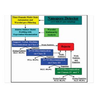 Nanopore Detector Markov Model Software Scheme Postcard