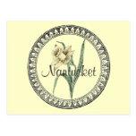 Nantucket Daffodil Parade Postcards