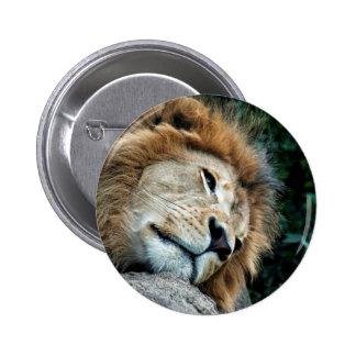 Nap 6 Cm Round Badge