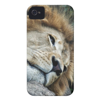 Nap iPhone 4 Cover
