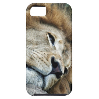 Nap iPhone 5 Covers