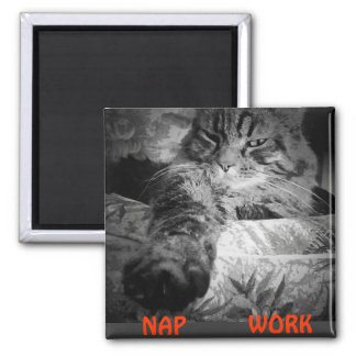 "Nap or Work? Kitty Says ""Nap"" Magnet"